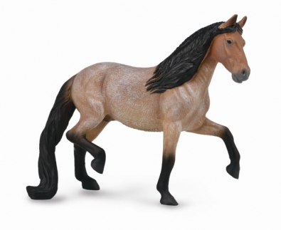 Mangalarga Marchador Stallion - Bay Roan - 88791