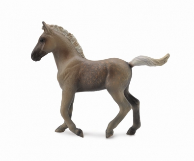 Rocky Mountain Foal - Chocolate  - 88799