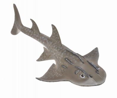 Shark Ray (Bowmouth Guitarfish ) - 88804