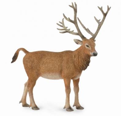麋鹿(四不像)