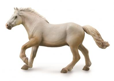 American Cream Draft Stallion - Cream - 88846