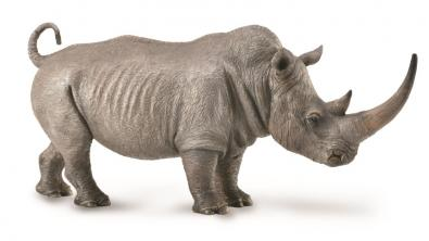 White Rhinoceros - 88852