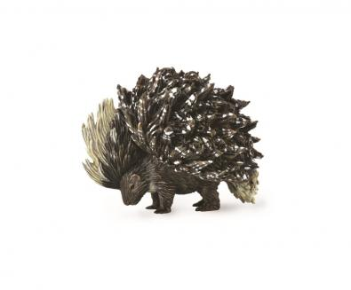 Porcupine  - asia-and-australasia