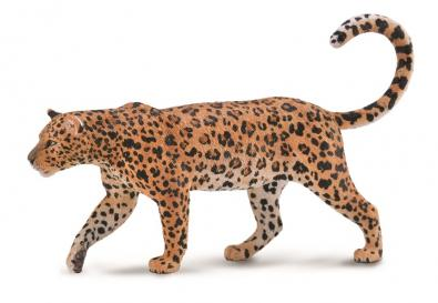 African Leopard  - 88866