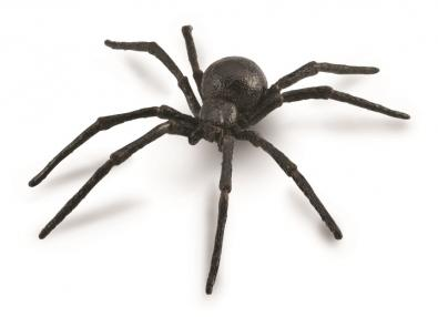 Black Widow Spider - 88884