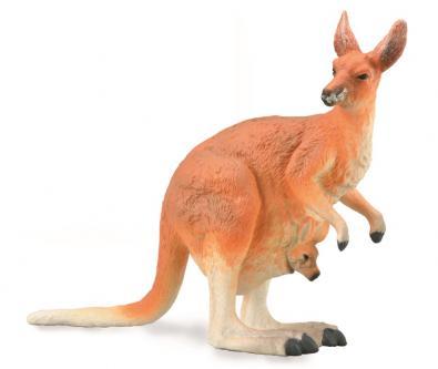 Canguro Rojo - Hembra con Bebé Canguro