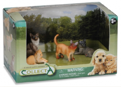 4pcs Dog & Cat Open Boxed Set - 89142
