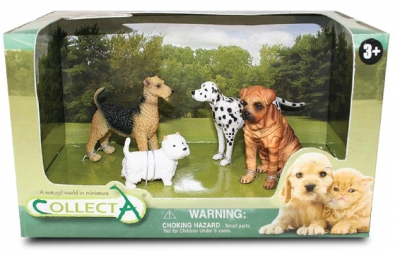 4Pcs Dog & Cat Open Box - 89155