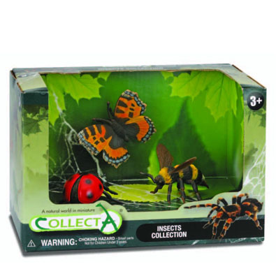 3pcs Insects Open Boxed Set