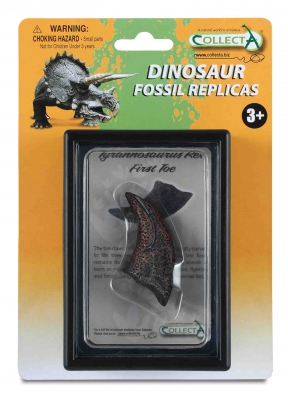First Toe of Tyrannosaurus Rex Box Set - 89280
