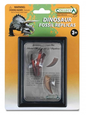 Hand Claw & Hand Replica of Tyrannosaurus Rex Box Set - 89289