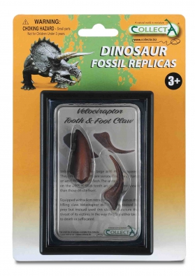 Tooth & Foot Claw of Velociraptor Box Set - 89291