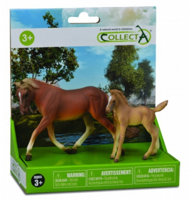 2 pcs Horse Life Set  - box-sets