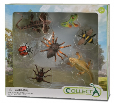 7pcs Insects Boxed Set